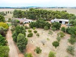 621 Coursing Park Rd, Downside, NSW 2650