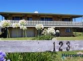 123 Bell Buoy Beach Road, Low Head, Tas 7253