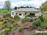 24-26 East Maurice Road, Ringarooma, Tas 7263