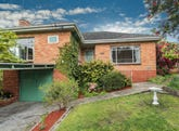 116 Shannon Street, Box Hill North, Vic 3129