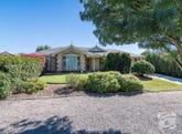 19 Susan Road, Nairne, SA 5252