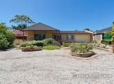 128 Haines Road, Banksia Park, SA 5091