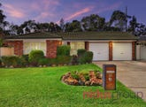 45 Flamingo Grove, Plumpton, NSW 2761