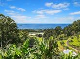 199A Bruxner Park Road, Korora, NSW 2450