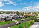 133 Erica Street, Cannon Hill, Qld 4170
