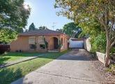 20 Wheeler Place, Minto, NSW 2566