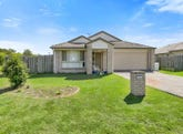 11 Farmer Street, Redbank Plains, Qld 4301