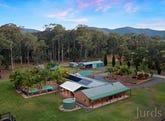 245 Sandy Creek Road, Mount Vincent, NSW 2323