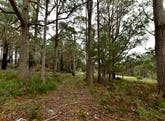 Lot 1, 43 Feil Road, Mount Lloyd, Tas 7140