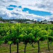 Flinders Peak Winery, 1544-1580 Ipswich Boonah Road, Peak Crossing, Qld 4306