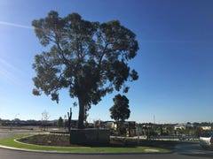 Lot 770, Beaufortia Crescent, Baldivis