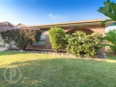 56 Remick Street, Stafford Heights, Qld 4053