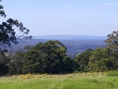 Lot 14 Graydons Pointer Road, Yatte Yattah, NSW 2539