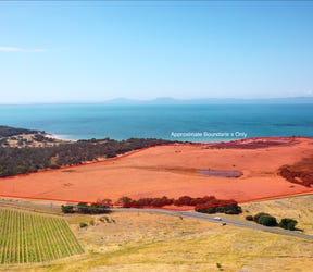Tasmanian Abalone Farms, 12868 Tasman Highway, Swansea, Tas 7190