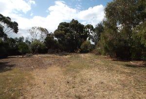 Lot 101 Kookaburra Court, McLaren Flat, SA 5171