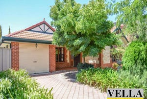 14 Almond Grove, Magill, SA 5072