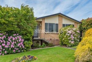 15 Michael Street, Summerhill, Tas 7250