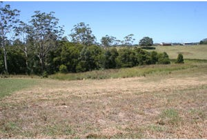 L13 Brenchley Circuit, Wauchope, NSW 2446