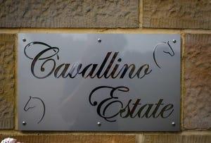 Cavallino Estate New England Highway, Tamworth, NSW 2340