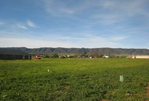 Lot 971, L971 Scenic Drive, Napperby, SA 5540
