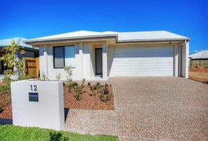 12 Speargrass Parade, Mount Low, Qld 4818