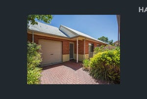8/3  Boothby Court, Unley, SA 5061
