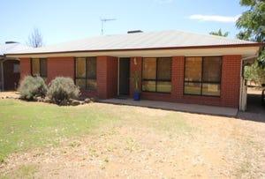 15 Williams Street, Wentworth, NSW 2648