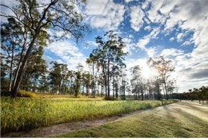Lot 195, Teviot Downs, New Beith, Qld 4124