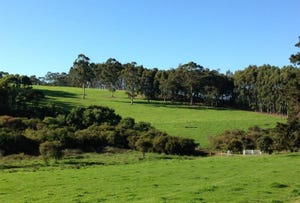875 Valley Of The Giants Rd, Denmark, WA 6333