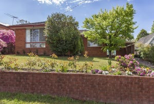 8 Douglas Street, Faulconbridge, NSW 2776