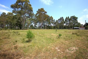 Lot 22, 15 Oakbanks Place, Worrigee, NSW 2540