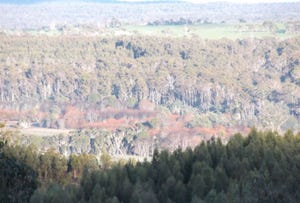 Land, Red Road, Pipers River, Tas 7252