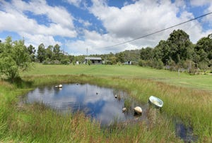 13 Dransfield Road, Copping, Tas 7174