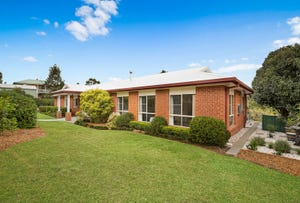 17 Palmer Drive, Highfields, Qld 4352