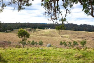 3, 9859 Princes Highway, Cobargo, NSW 2550