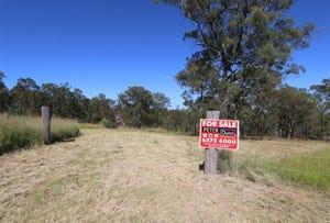 Lot 1, Lot 1 Sunnyside Lane, Singleton, NSW 2330