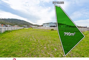 13 Ivy Close, Oakdowns, Tas 7019