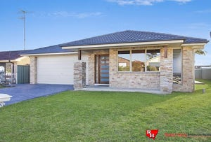 56  Menzies  Cct, St Clair, NSW 2759