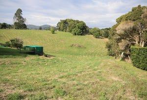 52 (Lot 1) Reserve Creek Road, Kielvale, NSW 2484