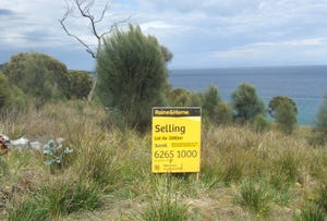 Lot 4a White Beach Road, White Beach, Tas 7184