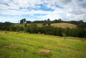 Lot 571 Wirrimbi Road, Newee Creek, NSW 2447