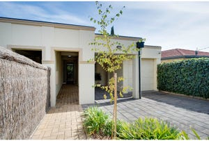 47 Allinga Avenue, Glenside, SA 5065