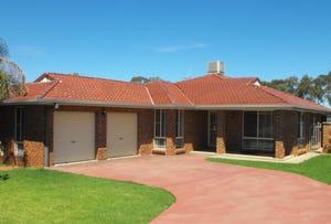 17 Golden Bar Drive, Parkes, NSW 2870