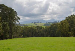 Lot 15 510 Sheepstation Creek Road, Yellingbo, Vic 3139
