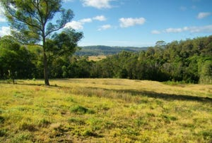 Various Boggy Creek Road, Millingandi, NSW 2549