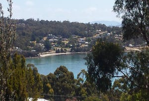 Lot 55 Lagoon Road, White Beach, Tas 7184