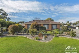 21 Wild Street, Williamstown, SA 5351