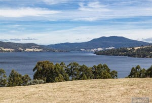 Lot 1 Fleurtys Road, Castle Forbes Bay, Tas 7116