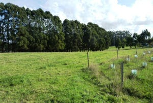 Lot 4, Oldina Road, Wynyard, Tas 7325