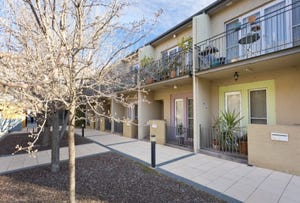 8/40 Bluebell Street, O'Connor, ACT 2602